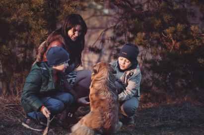 Photo by Oleksandr Pidvalnyi on Pexels.com