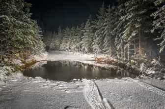 Photo by Egor Kamelev on Pexels.com