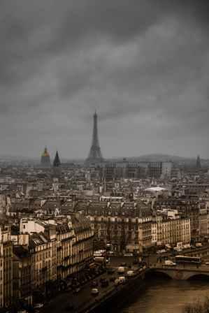 Photo by Henrik Pfitzenmaier on Pexels.com