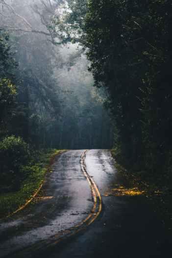 Photo by Kaique Rocha on Pexels.com