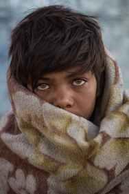 Photo by Arvind shakya on Pexels.com