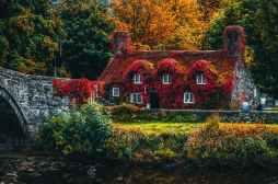 Photo by Lisa Fotios on Pexels.com